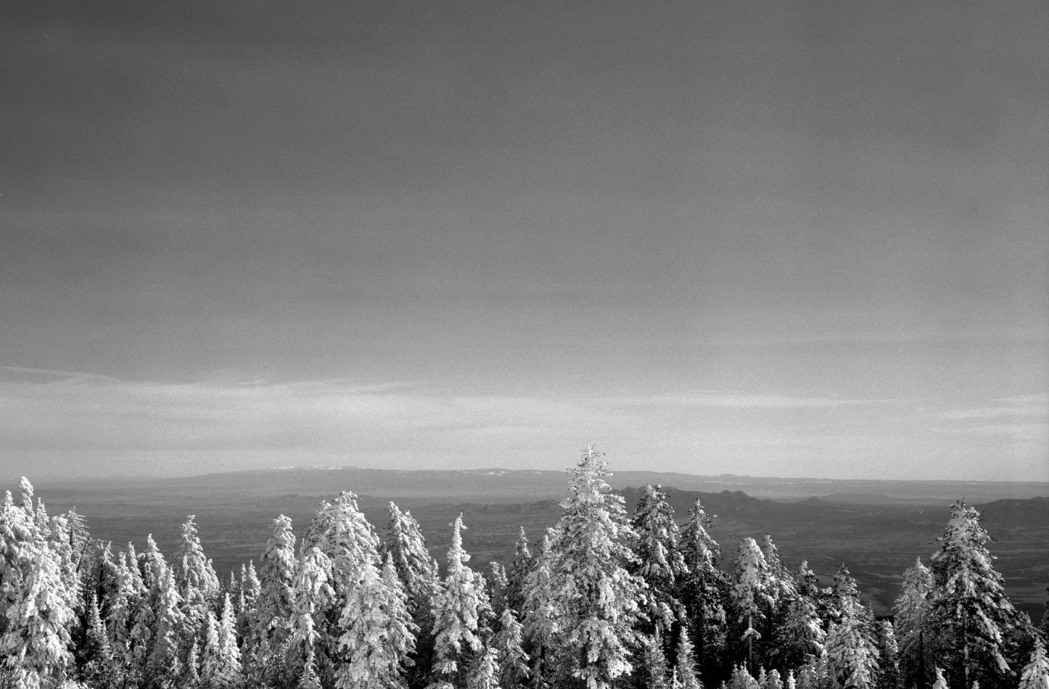 Photography by John Sykes Jr. (381)